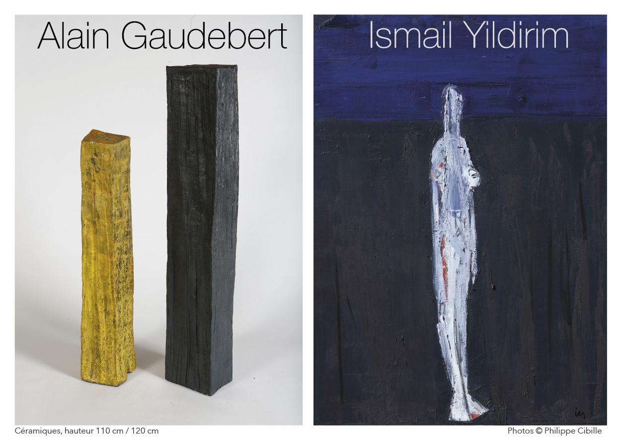A. Gaudebert, I. Yildirim